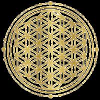 Susanne-Logo-hell-700x684-min